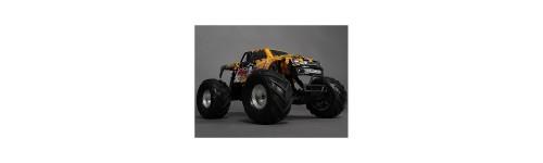 Quanum 1:10 Skull Crusher 2WD Brushless Monster Truck