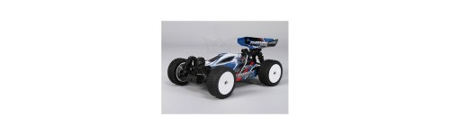 Turnigy 1:16 Brushless 4WD Racing Buggy w.25A 2.4Ghz