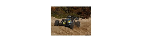 Basher BSR BZ-888 1:8 4WD Racing Buggy